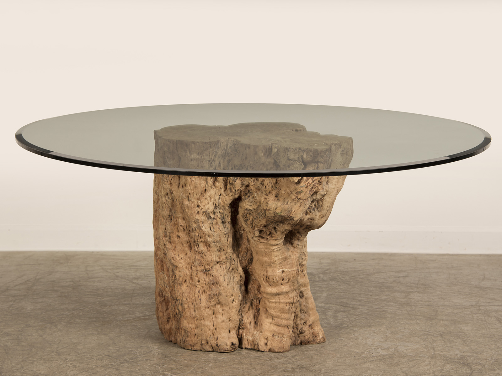 10 Best Collection of Tree Trunk Coffee Table Glass Top