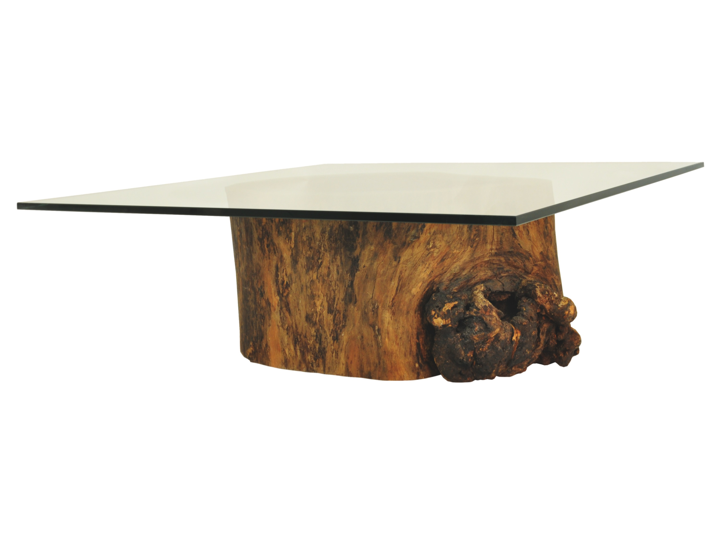 Tree Trunk Coffee Table Glass Top Modern Clear Bent Glass Rectangular Coffee Table Strada Modern Interesting Glass Coffee Table Can Be Of Unusual Style (Image 6 of 10)