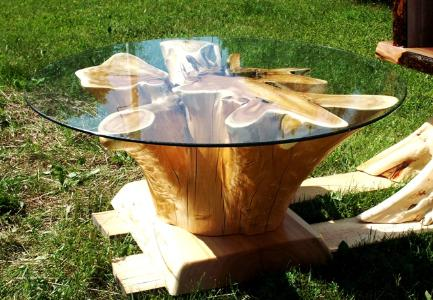 Tree-Trunk-Coffee-Table-With-Glass-Top-I-simply-wont-ever-be-able-to-look-at-it-in-the-same-way-again (Image 4 of 9)