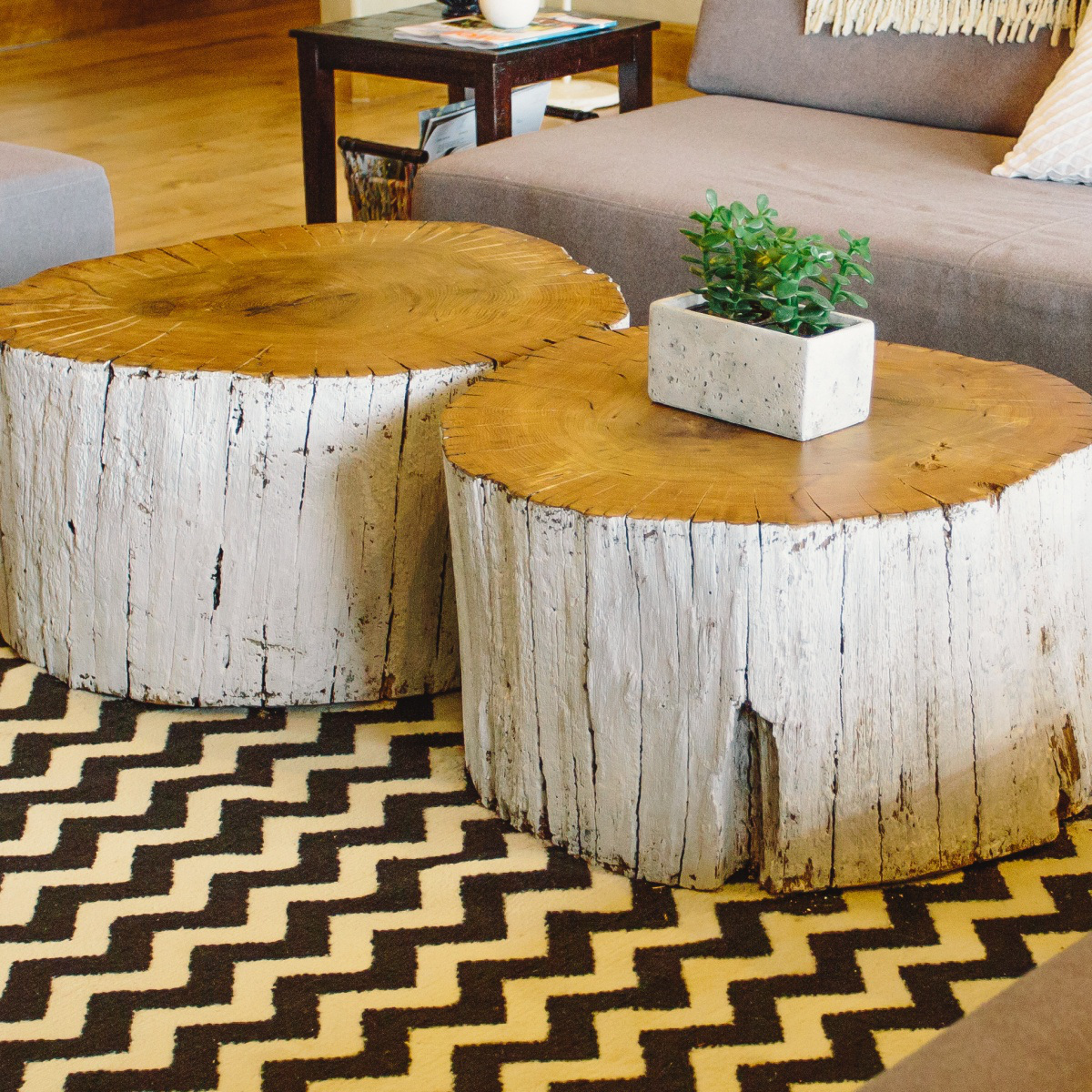 Freestanding White Brown Round Double Living Room Tree Trunk Coffee Tables Brown Natural Varnish Coffee Able Top Tree T (Image 5 of 10)