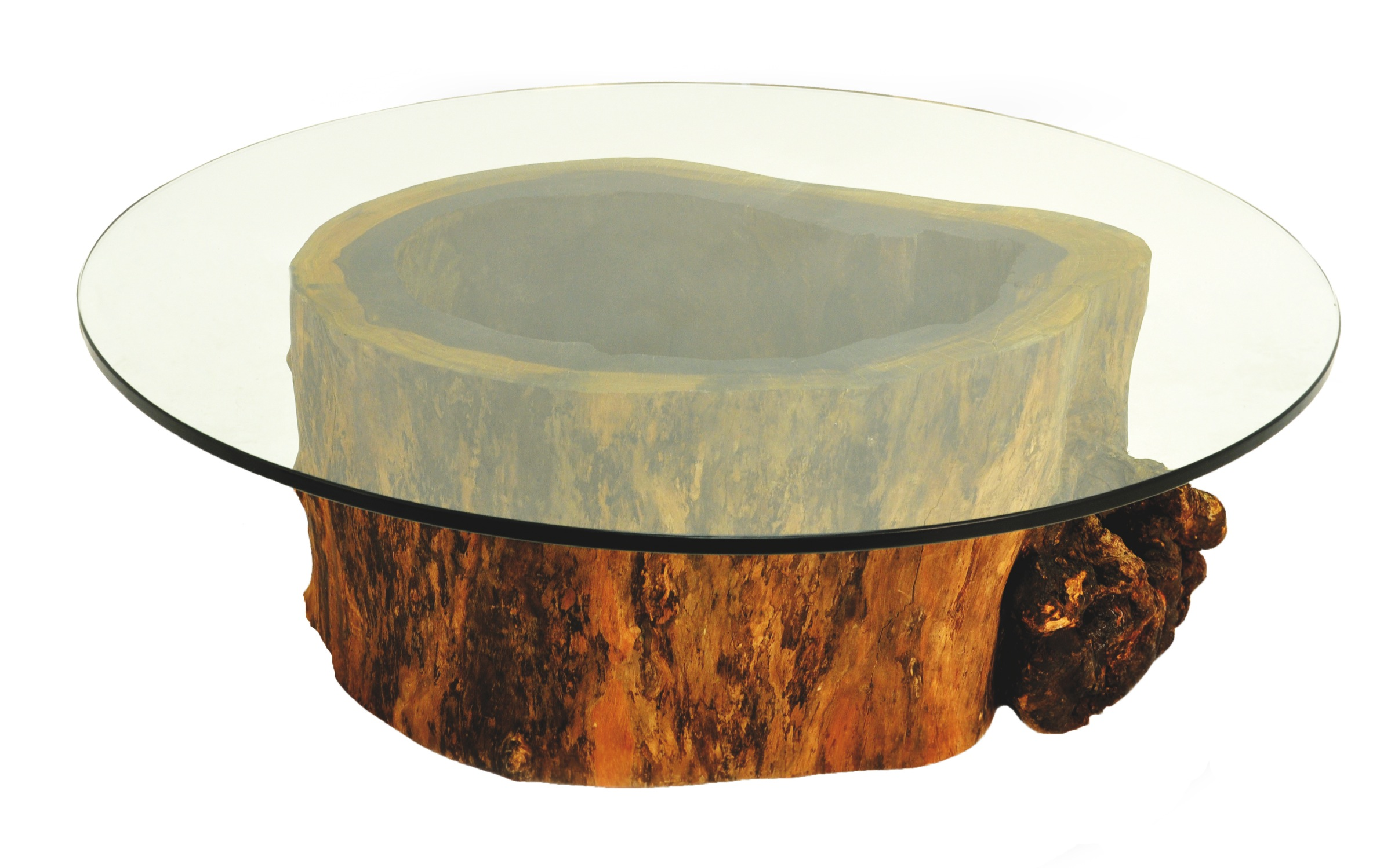 Glass Top Coffee Table Made Of Reclaimed Wood Salvaged Hollow Trunk From A Tree That Round Wood Coffee Table With Glass Top (View 3 of 10)