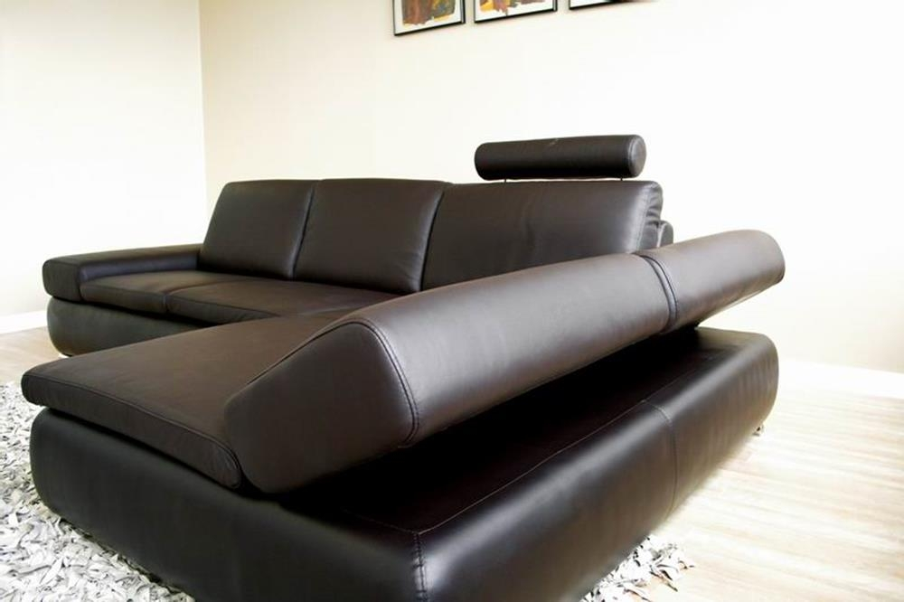 Baxton Studio Daybed Dark Brown Leather definitely within Diana Dark Brown Leather Sectional Sofa Set (Image 1 of 20)
