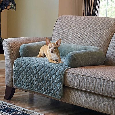Best 25 Dog Couch Cover Ideas On Pinterest Pet Couch Cover Dog good pertaining to Dog Sofas and Chairs (Image 6 of 20)