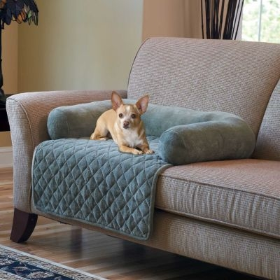 Best 25 Pet Sofa Cover Ideas On Pinterest Pet Couch Cover Sofa Very Well For Sofa Settee Covers (View 5 of 20)