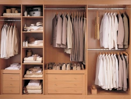 Best 25 Wardrobe Storage Ideas On Pinterest Ikea Walk In effectively with regard to Drawers And Shelves For Wardrobes (Image 24 of 30)