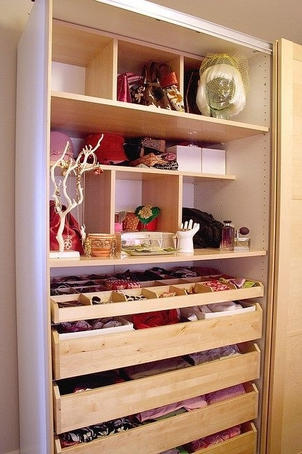 Best 25 Wardrobe Storage Ideas On Pinterest Ikea Walk In nicely with Double Wardrobe With Drawers And Shelves (Image 18 of 30)