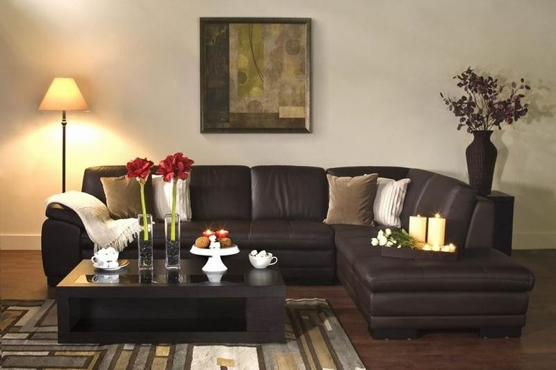 Featured Photo of Diana Dark Brown Leather Sectional Sofa Set