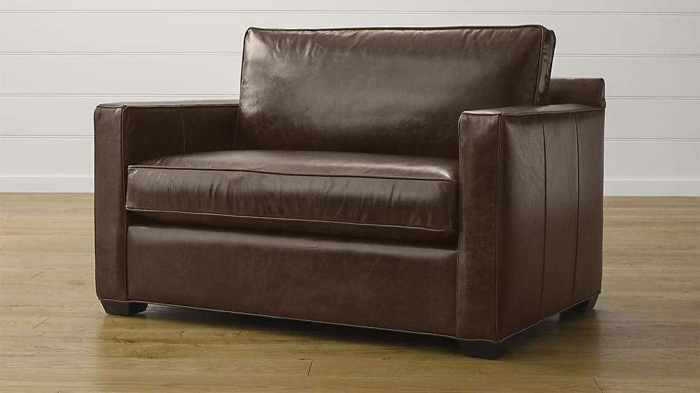 Davis Leather Twin Sleeper Sofa Crate And Barrel certainly within Loveseat Twin Sleeper Sofas (Image 8 of 20)