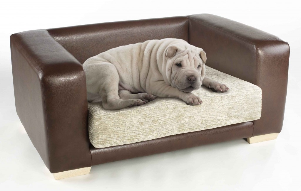Dog Sofa Bed effectively with regard to Dog Sofas And Chairs (Image 13 of 20)