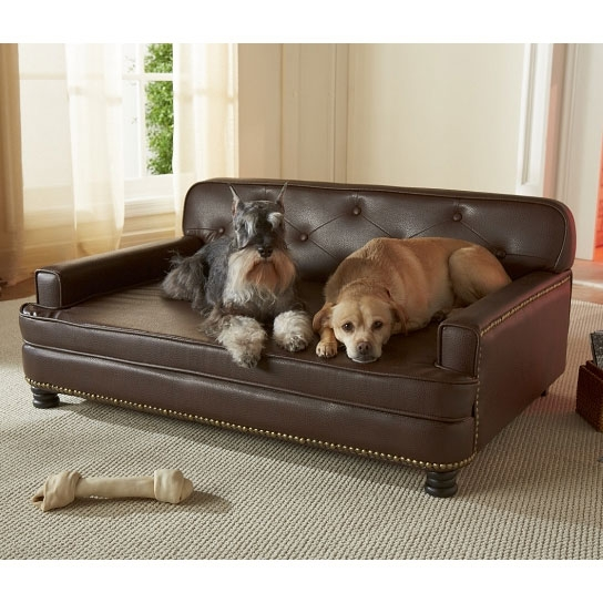 Encantado Espresso Dog Sofa Bed Luxury Dog Beds At Glamourmutt most certainly for Luxury Sofa Beds (Image 6 of 20)