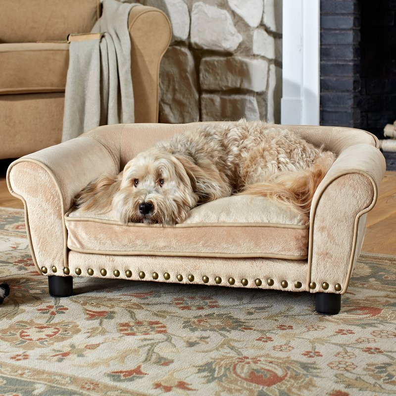 Enchanted Home Pet Dreamcatcher Dog Sofa Bed In Carmel Reviews definitely for Dog Sofas And Chairs (Image 16 of 20)