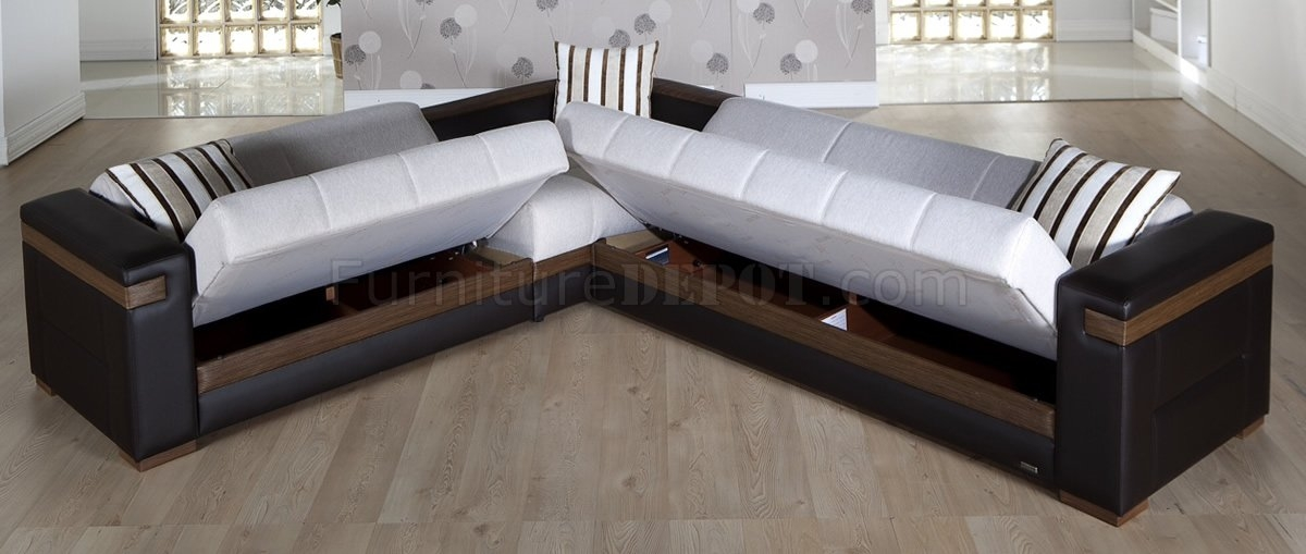Popular Photo of Sectional Sofa Beds