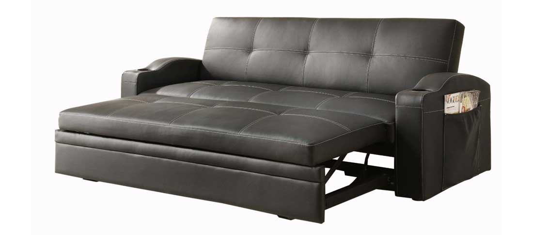 Pull Out Couch As Multi Functional And Compact Furniture Exist Decor definitely in Pull Out Sofa Chairs (Image 16 of 20)
