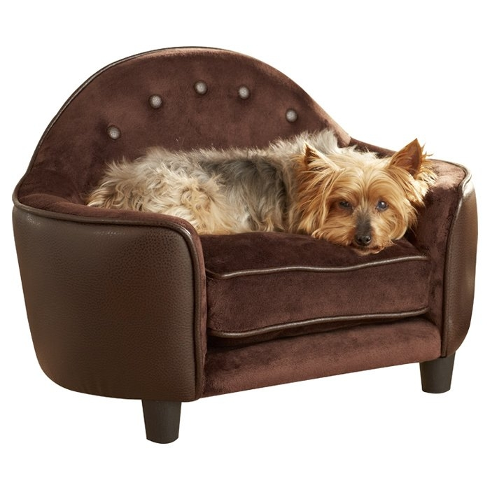 Featured Photo of Dog Sofas And Chairs
