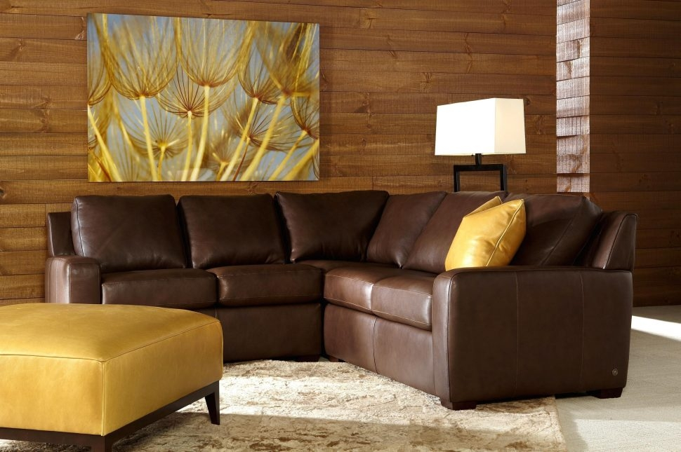 Sofas Center Craigslist Tampa Bay Leather Sleeper Sofa Tags Well Within Craigslist Sleeper Sofa (View 18 of 20)