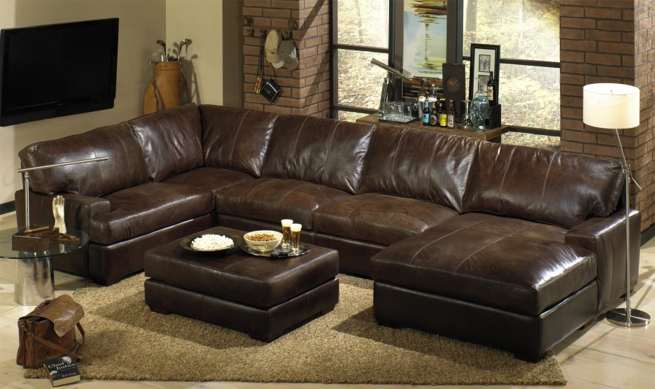 Stylish Leather Sleeper Sectional Sofa Sectional With Sleeper clearly regarding Diana Dark Brown Leather Sectional Sofa Set (Image 20 of 20)
