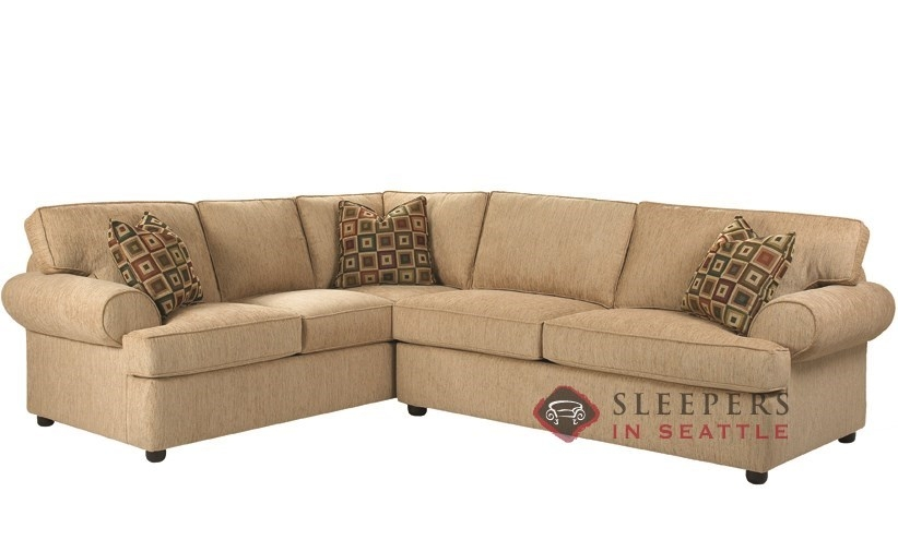 Stylish Sectional Sofas With Sleepers Alluring Home Design Clearly Inside Sleeper Sectional Sofas (View 19 of 20)