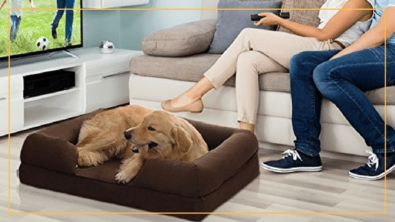 Top 10 Best Dog Sofas And Chairs In 2017 clearly throughout Dog Sofas and Chairs (Image 19 of 20)