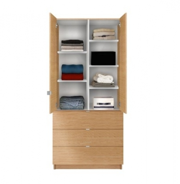 Wardrobes With Shelves And Drawers Wardrobe Designs Furniture very well within Wardrobe With Shelves and Drawers (Image 3 of 30)