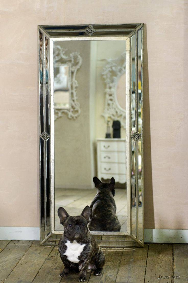 27 Best Mirror Images On Pinterest | Diy Mirror, Mirrors And Home inside Silver French Mirrors (Image 9 of 25)
