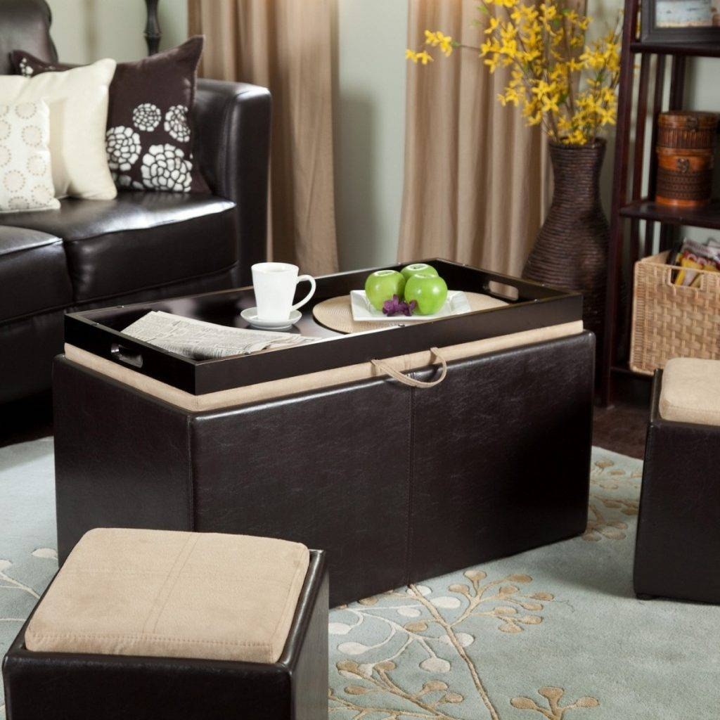 3 Tips In Finding Ottoman Coffee Table In Best Quality - Interior throughout Quality Coffee Tables (Image 2 of 30)