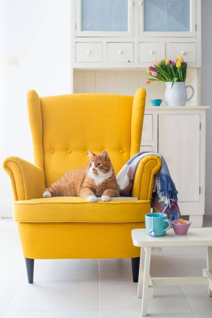 Best 25+ Yellow Armchair Ideas On Pinterest | Yellow Sofa Design regarding Yellow Sofa Chairs (Image 7 of 30)