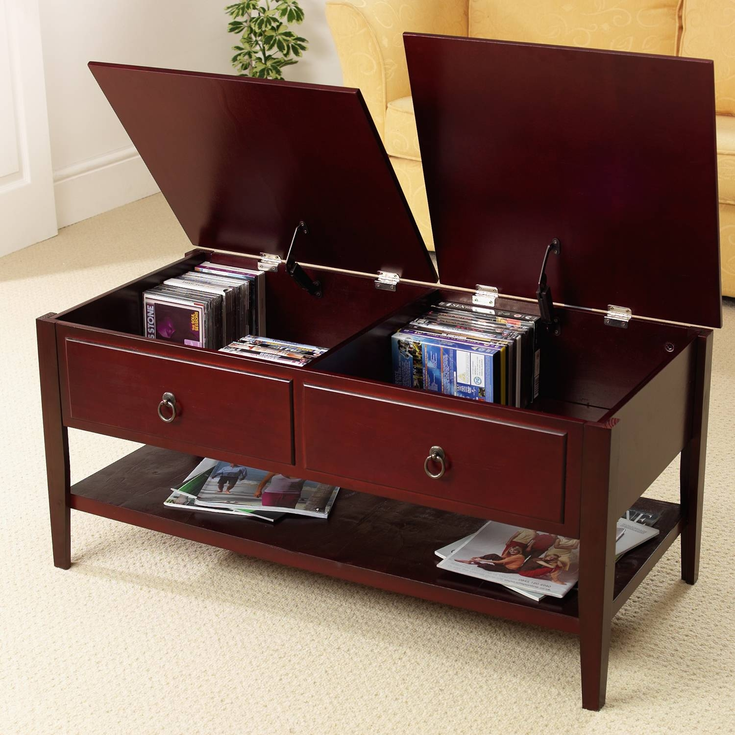 Coffee Tables Ideas: Impressive Coffee Table Storage Trunk Storage for Coffee Tables With Storage (Image 12 of 30)