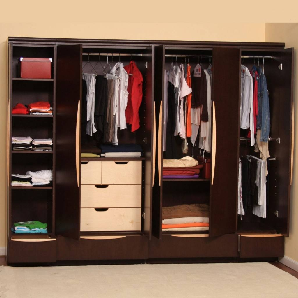 Fabulous Wooden Ikea Bedroom Closets Presenting Many Shelves And pertaining to Wardrobe Drawers and Shelves Ikea (Image 12 of 30)