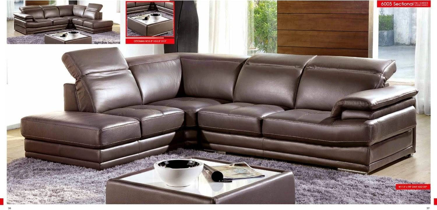 Grey Sectional Couch: Italian Grey Sectional Couch throughout Gray Leather Sectional Sofas (Image 21 of 30)