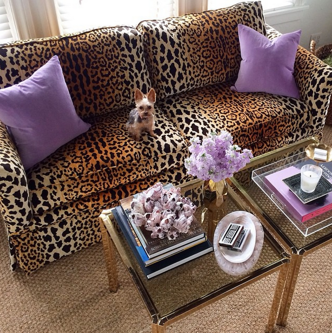 Leopard Ottoman Coffee Table Images Leopard Ottoman Coffee Table within Leopard Ottoman Coffee Tables (Image 19 of 30)