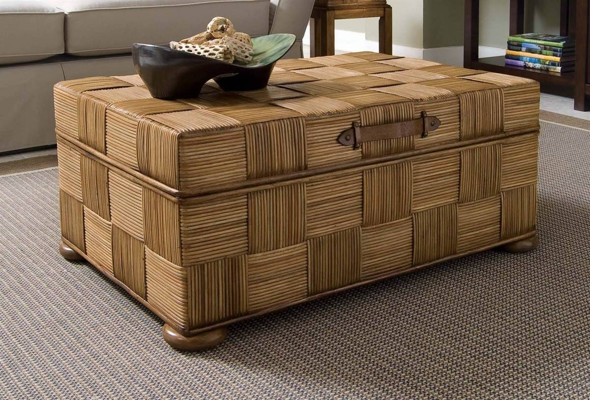 Luxury Storage Trunk Coffee Table 41 For Home Interior Design within Storage Trunk Coffee Tables (Image 18 of 30)