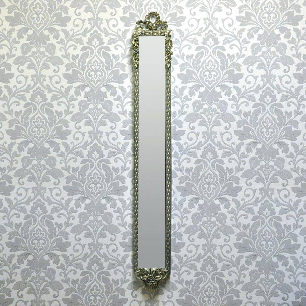 Narrow Wall Mirrors – Amlvideo For Silver Rectangular Mirrors (View 18 of 25)