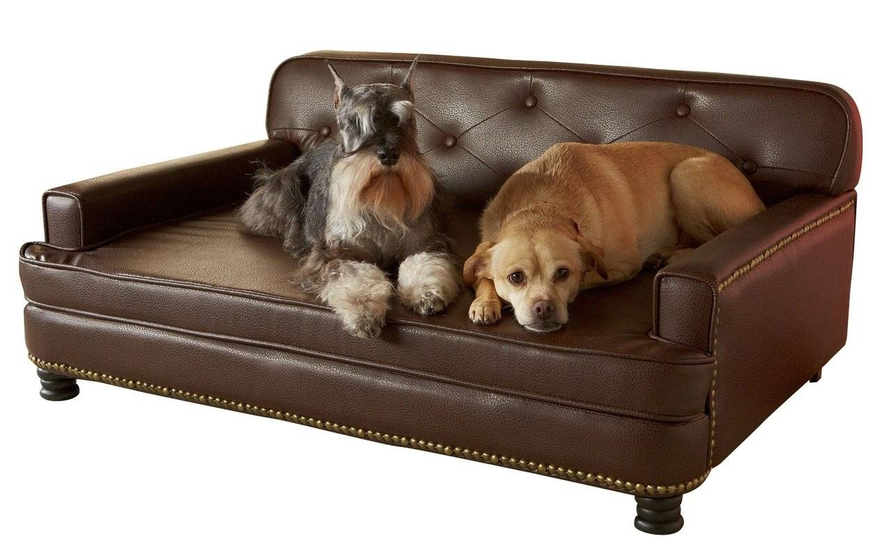 Featured Photo of Sofas For Dogs