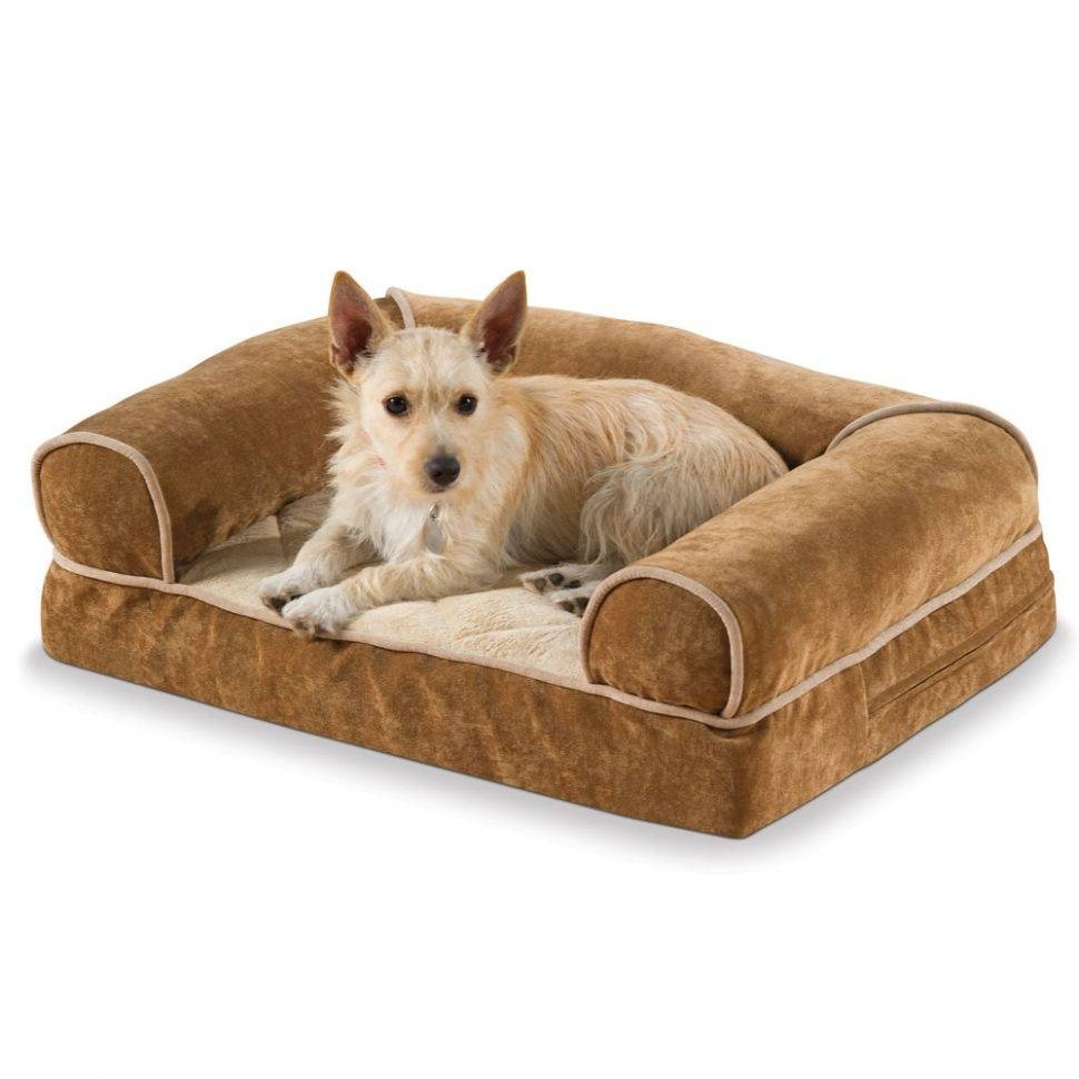 Sofas Center : 83896 Pt3 Ac Sl1500 V1495833045 Aspen Pet Sofa For with regard to Sofas For Dogs (Image 14 of 30)