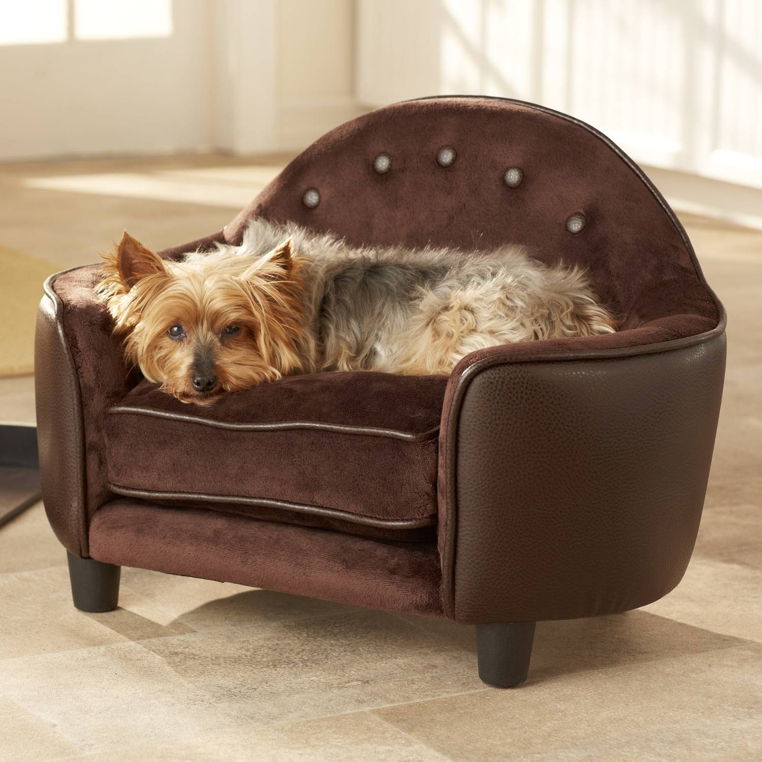 Sofas Center : Windsormediumbrownwithdog Stunning Pet Sofa Picture for Sofas for Dogs (Image 26 of 30)