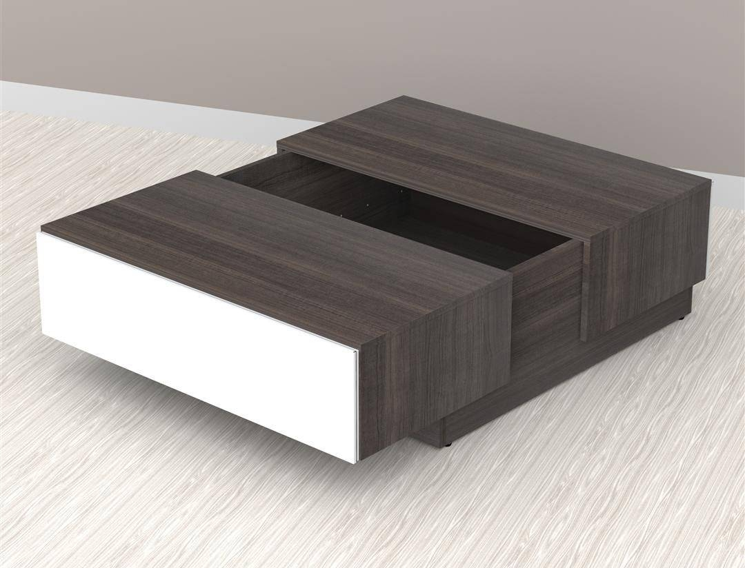 Square Shaped Walnut Coffee Table With Storage Also Two Doors And regarding Low Coffee Tables With Storage (Image 26 of 30)