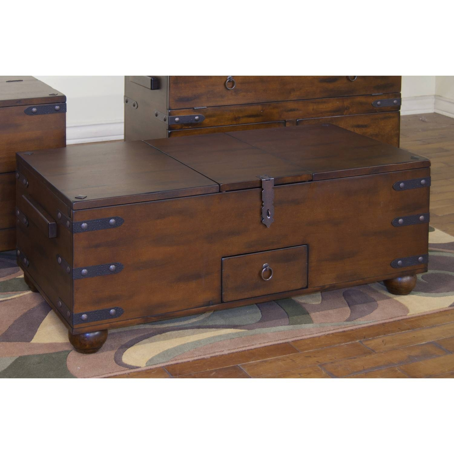 Trunk Coffee Tables In Wonderful Looks! intended for Trunks Coffee Tables (Image 29 of 30)