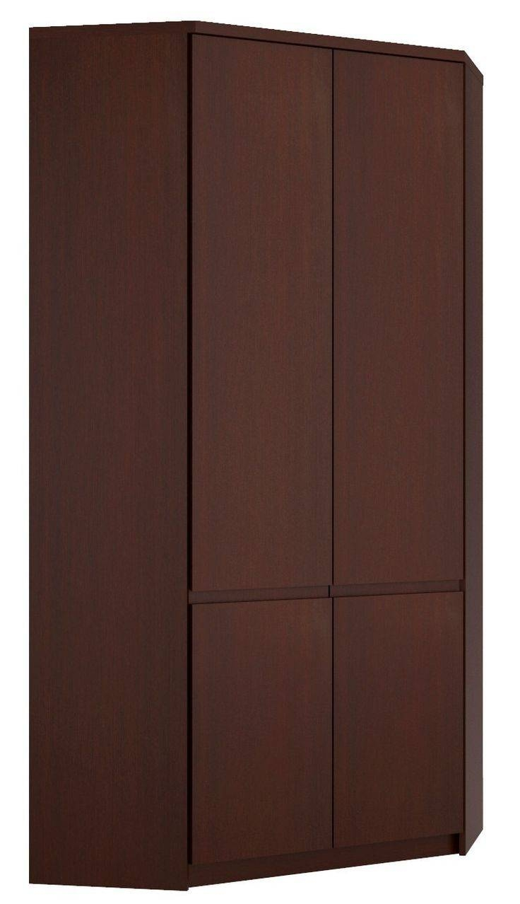 Wardrobe : Dark Wood Fitted Wardrobe Painting A Dark Wood Wardrobe Within Solid Dark Wood Wardrobes (View 24 of 30)