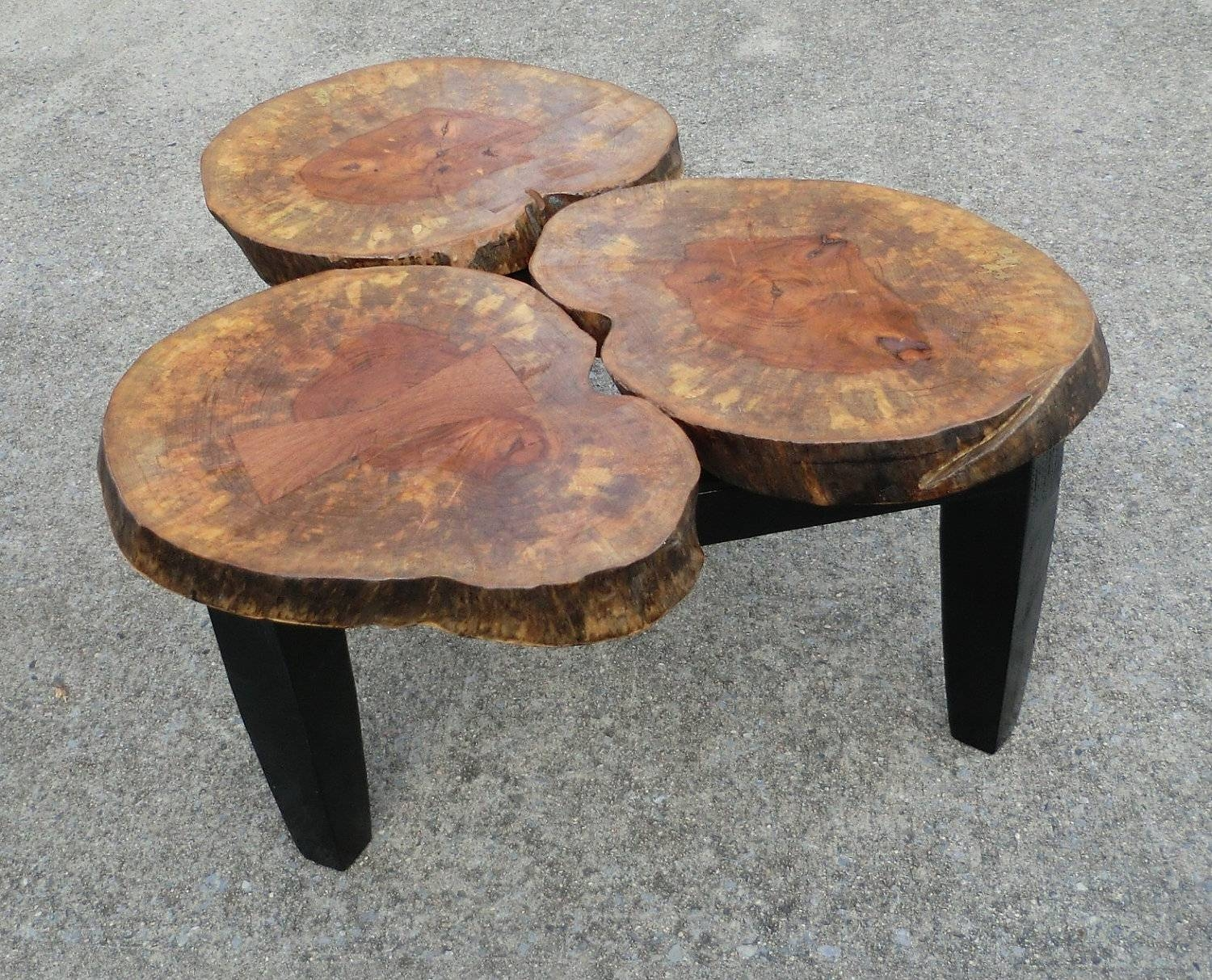 Coffee Table. Extraordinary Tree Stump Coffee Table Design Ideas throughout Tree Trunk Coffee Table (Image 4 of 15)
