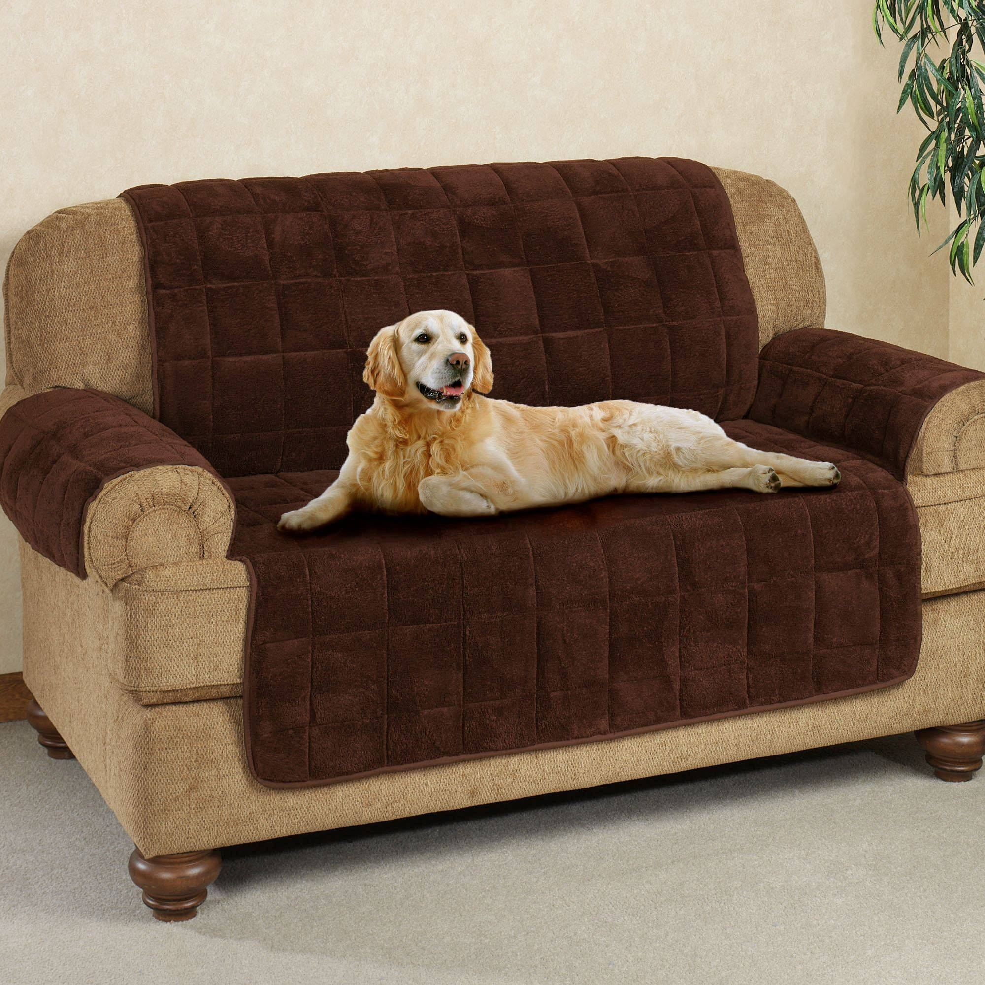 Furniture Covers, Pet Covers, Furniture Protectors | Touch Of Class pertaining to Dog Sofas And Chairs (Image 9 of 15)