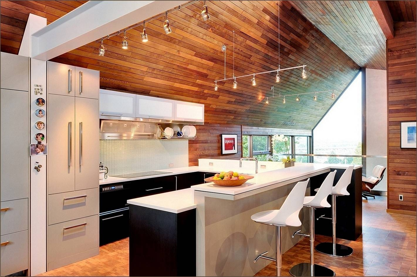 Interior: Mid Century Modern Kitchen Design With Wood Ceiling And Within Sloped Ceiling Track Lighting (View 3 of 15)