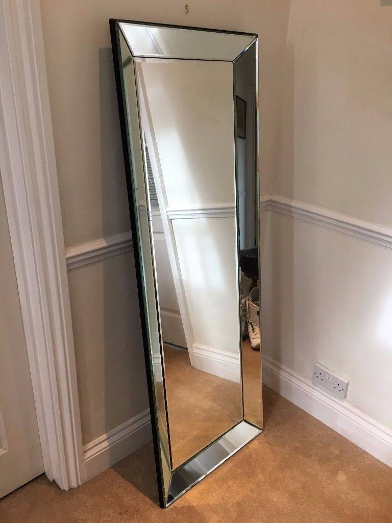 Large Mirror - Bevelled Edges, Wall Mounted Or Free Standing. | In with Large Free Standing Mirrors (Image 10 of 15)