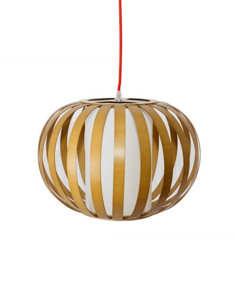 Pendant Lighting - Parrotuncle within Bentwood Pendants (Image 9 of 15)