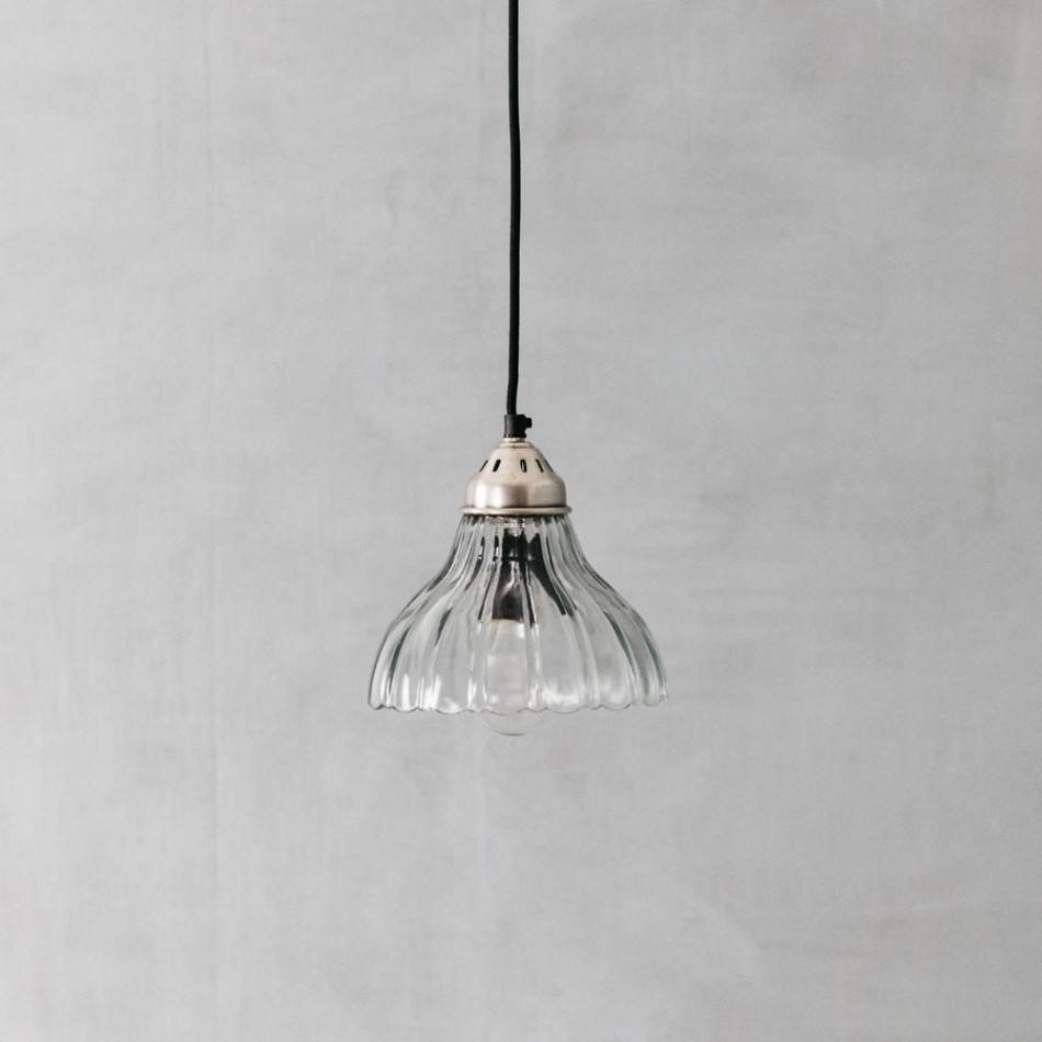Penny Scalloped Clear Glass Pendant Light regarding Scalloped Pendant Lights (Image 11 of 15)