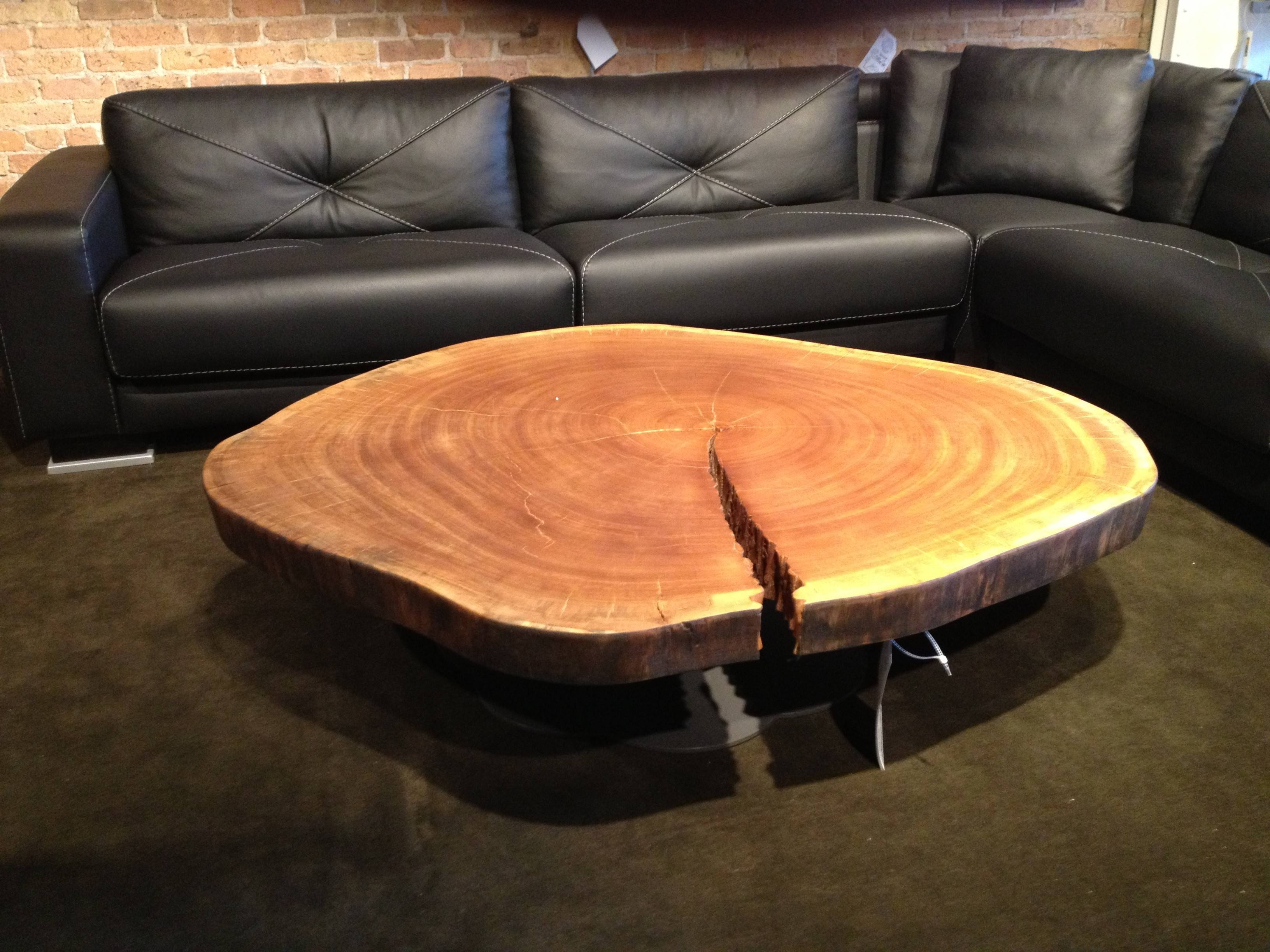 15 Ideas of Tree Trunk Coffee Table