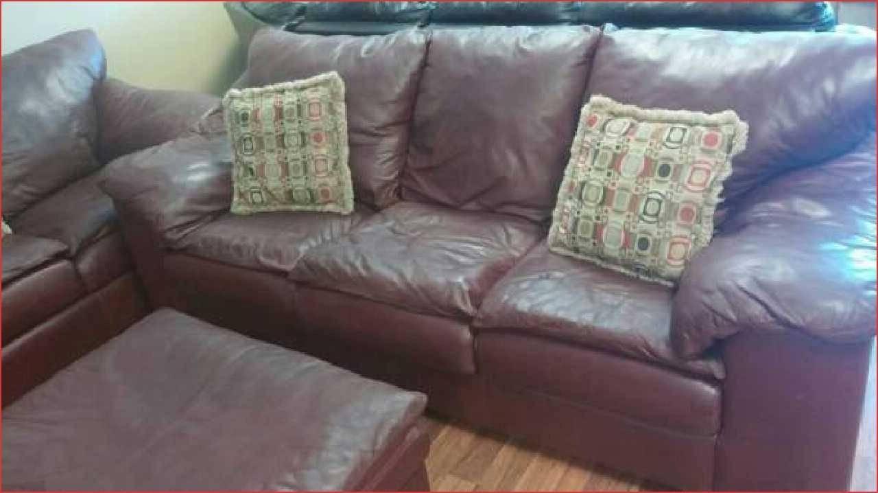 20 Inspirations Sealy Sofas | Sofa Ideas with regard to Sealy Sofas (Image 8 of 15)