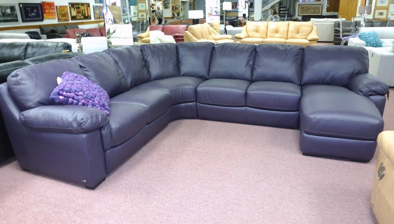 Best Navy Blue Leather Sectional Sofa 64 With Additional Jcpenney within Blue Leather Sectional Sofas (Image 4 of 15)