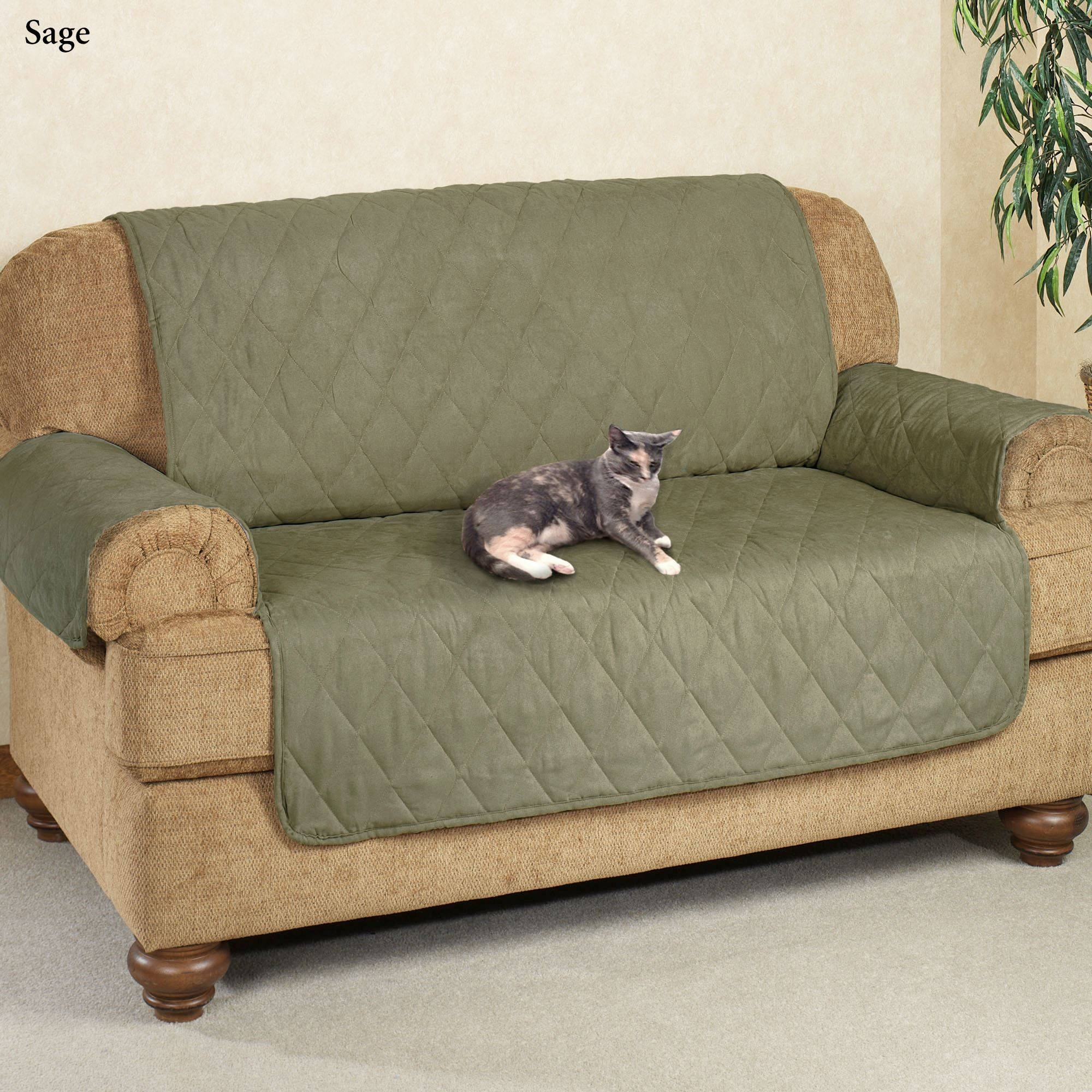 Cat Proof Sofa 42 With Cat Proof Sofa – Bible Saitama Inside Cat Proof Sofas (View 5 of 15)
