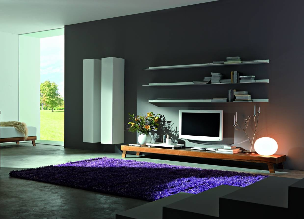 Design Contemporary Tv Wall Unit : Modern Contemporary Tv Wall With Modern Contemporary Tv Stands (View 9 of 15)