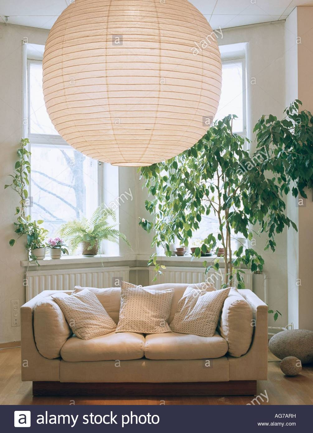 "Large Japanese Paper Lantern Above White Sofa And ""ficus Benhamina throughout Bay Window Sofas (Image 11 of 15)"